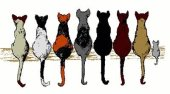 logo ecole chat maursois